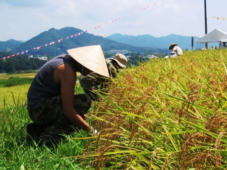 やまのひと、草を刈る